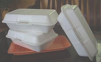 Bio-Degradable Food Boxes