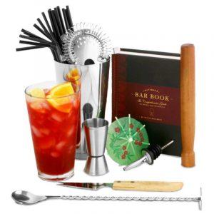 martini cocktail shaker set